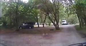 Beddgelert-Forestry-Campsite