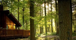 Scudo-Camper-Camping-Trip-Camping-Caravan-Club-Christchurch-site-Forest-of-Dean-Part-1
