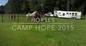 Camp Hope Horses