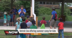 Detroit Zoo offering summer camp for kids