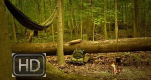 Hangin in the Woods: HD Bushcraft/Outdoor Video.