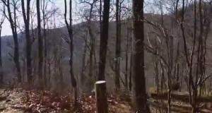 Hiking Through Gooch Gap – Winter Camping