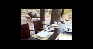 Hotel Selous Luxury Camp Selous Reserve Tanzania United Republic of