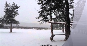 Mini blizzard while camping