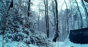 Mit der Hängematte im Schnee – Hammock Winter Camping