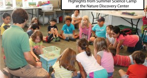 Summer Science Camp 2015 Week 9 – Insects