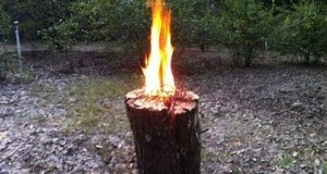 Swedish fire torch.One log fire. Neat trick for patio/camping