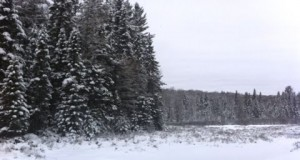 Winter Camping – January – Algonquin Park