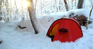 Winter Camping – New Year in Algonquin Park